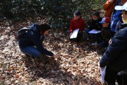 Classes vertes au pays des Mille Sources (Bugeat)