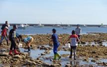 Classes de mer sur l'Île d'Oléron